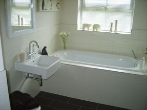 Image of sealant application in bathroom